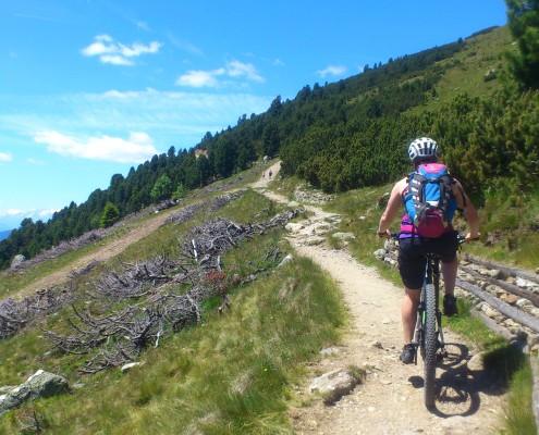 Ein steiniger Bergweg auf dem Biker und Wanderer unterwegs sind